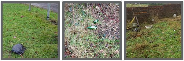 Litter example